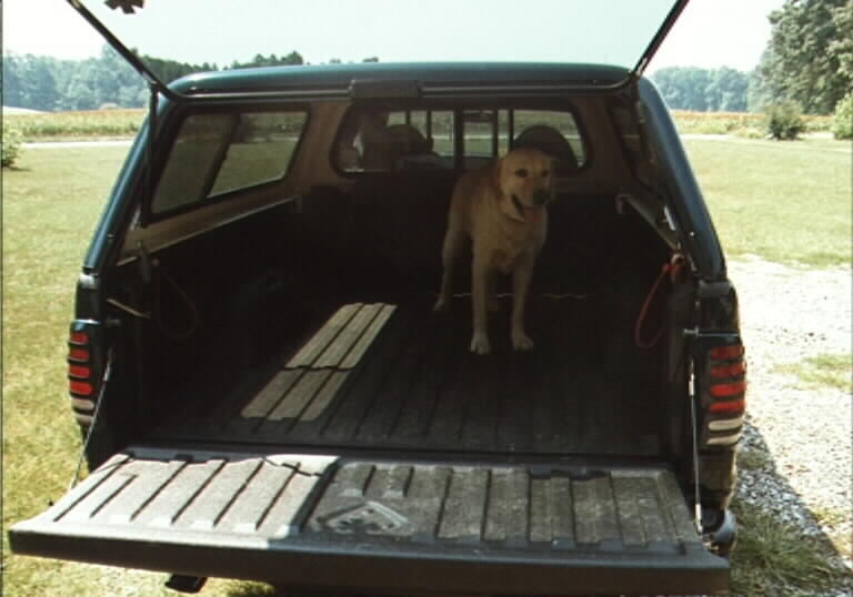 Truck Bed with Line-X application.